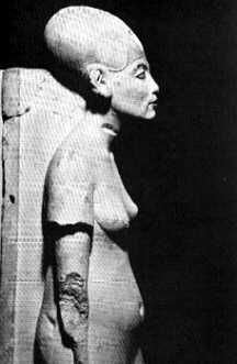 Sculpture of Nefertiti without her Headpiece or Wigs. Her elongated Skull is identical to the Peruvian Skulls, and other ancient Skulls that appear all over the World. Is it not CLEAR enough ?