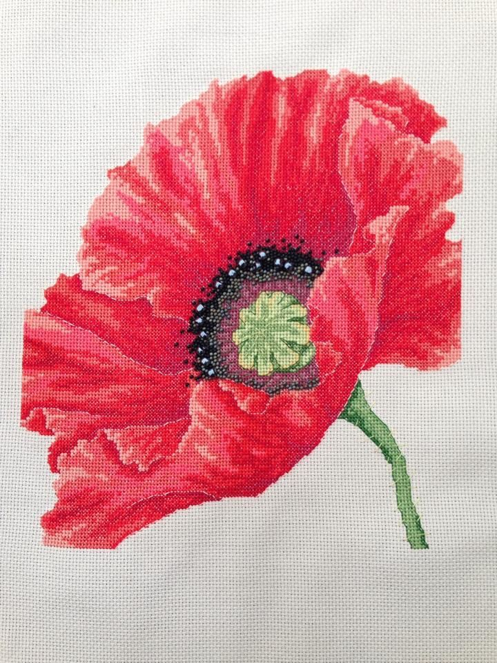 From WOXS magazine - love poppies and this is one of my favourite that I've stitched