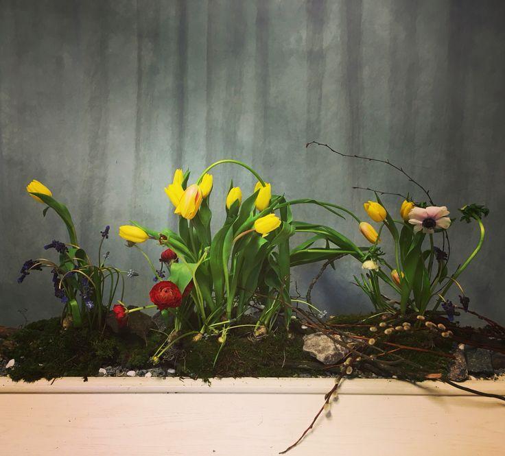 Vegetative coffin decor