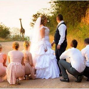 Rain Farm Game and Lodge - Everything Wedding