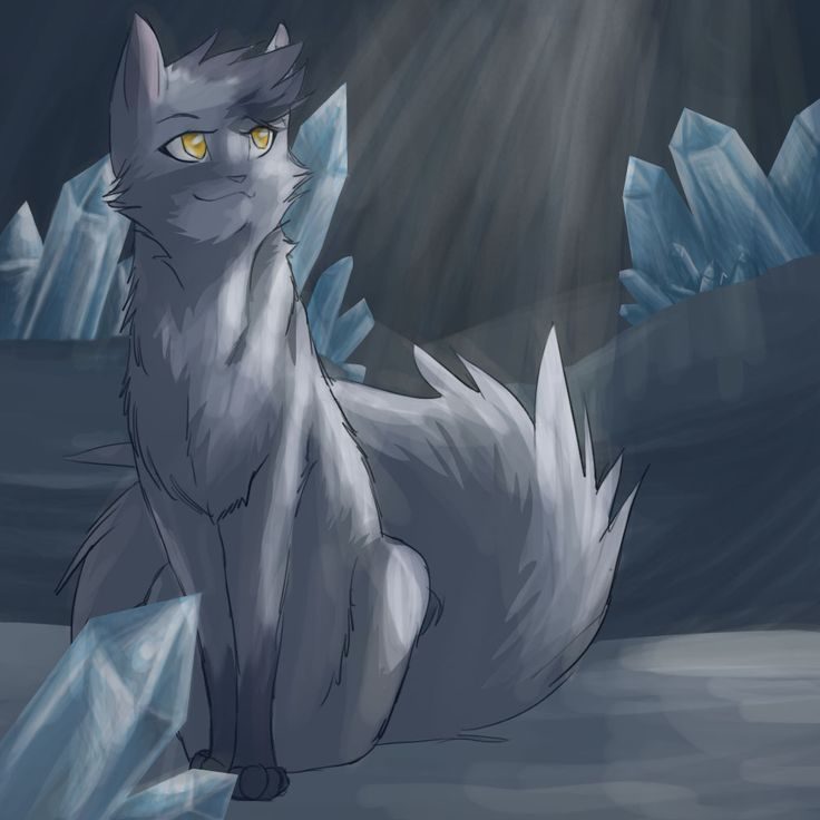 Warriors A Vision Of Shadows Book 1: 1000+ Images About Warrior Cats On Pinterest