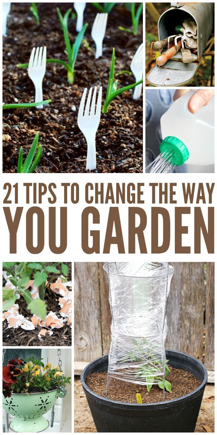 21 Tricks That Will Change the Way You Garden - One Crazy House