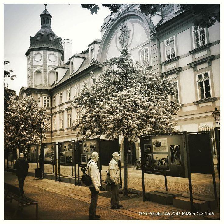 #gallery #art #people #garden #mycity #city #street #architecture #history #heritage #plzen #plzeň #pilsen #cz #czech #czechia #czechrepublic #česko #české #českárepublika #photo #photography #today #library #2016