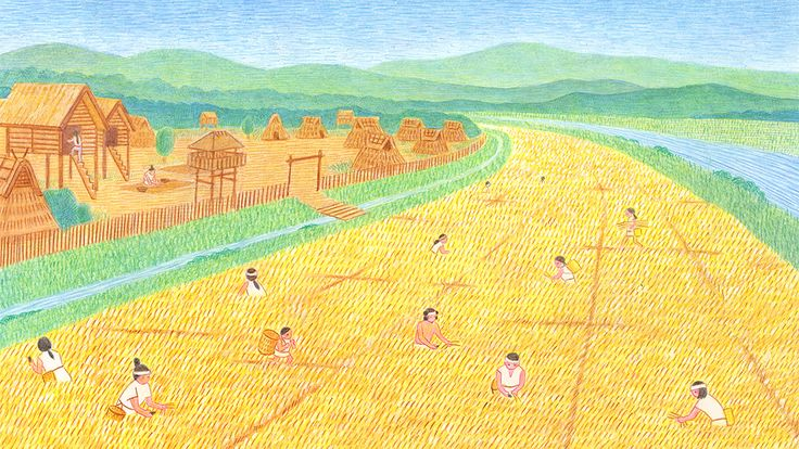 Harvest of Yayoi era