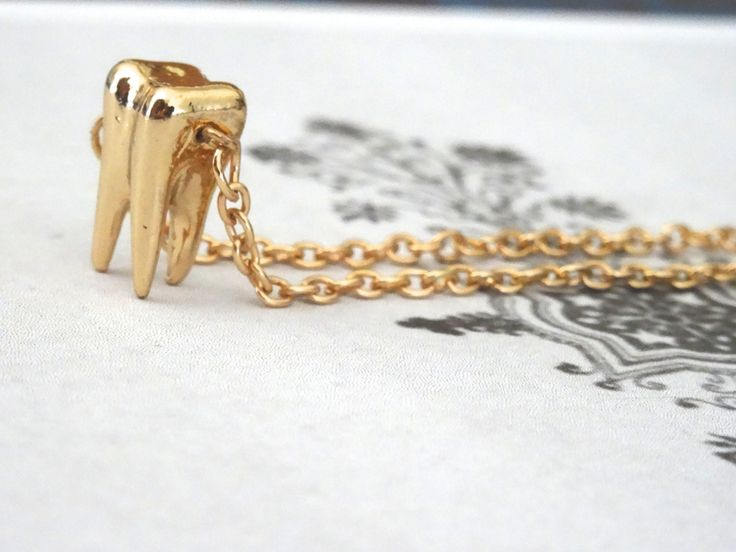 Human Molar Bracelet 3D Golden Long Wisdom Tooth Replica Adjustable Charm Bracelet Weird Human Anatomy PeculiarCollective Inv0152 by PeculiarCollective on Etsy