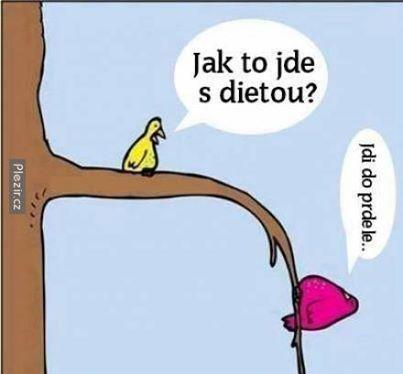 dieta-vtipne-obrazky.jpg (403×374)