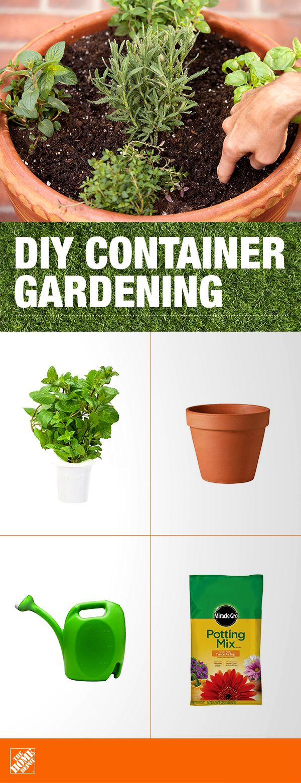 For beginning gardeners, the best way  to start is with  a small  herb garden. Herbs tend to be among the  easiest plants  to grow and are a great addition to both your landscape and your table. Give your indoor and outdoor container  plants the right ingredients to grow bigger and more beautiful with Miracle-Gro Potting Mix. Click to learn more about container gardening.