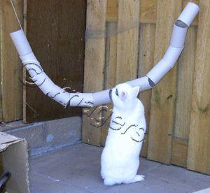 Veel leuke en geodkope voorbeelden van konijnenspeelgoed