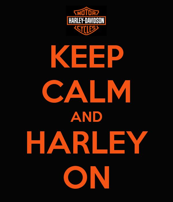Harley Davidson Quotes 395 Best Harley Up Images On Pinterest  Motorcycle Quotes Biker