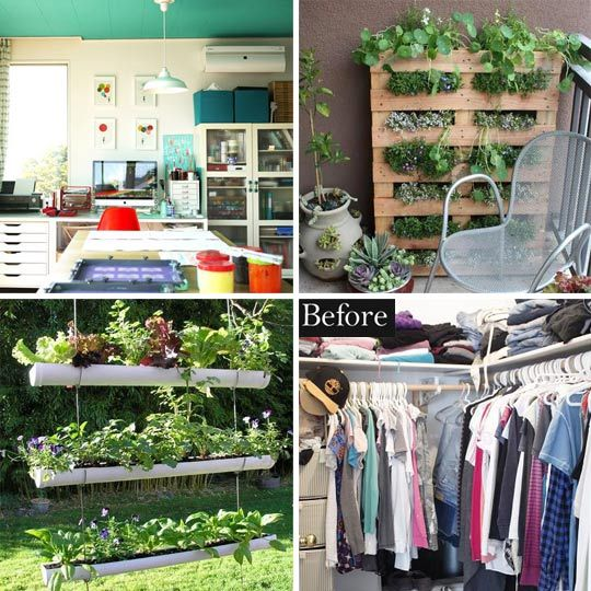 Adventures in apartment #gardening and #organization.