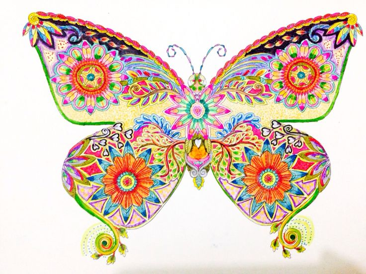 colouring butterfly
