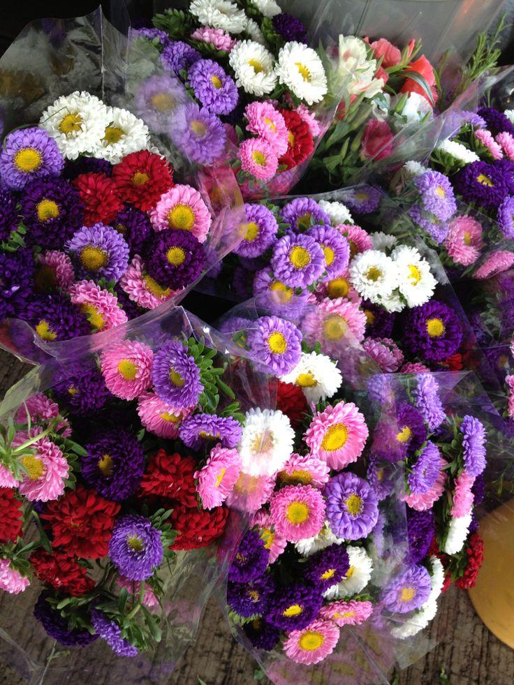 14 best images about flores preciosas on pinterest fabric flowers tela and photos - Fotos flores preciosas ...