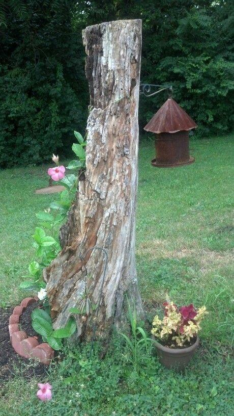 Repurposed dead tree stump! Cute flower pot! It even has a ...