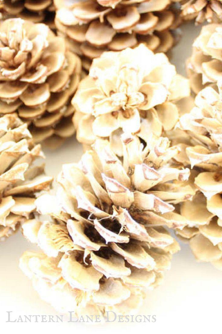 DIY Bleached Pine Cones