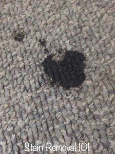 Home Remedy To Remove Grease From Carpet Cleaning Hacks