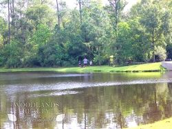 A happy family enjoys fresh air in front of a lake playing games after a nice day out - Gallery - Woodlands Realty Pros