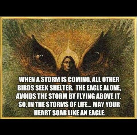 Inner peace Native American Eagle Quote ~ Soar Like an Eagle through Life's Storms!