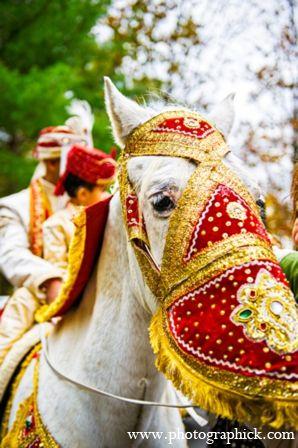 indian wedding baraat horse http://maharaniweddings.com/gallery/photo/8722