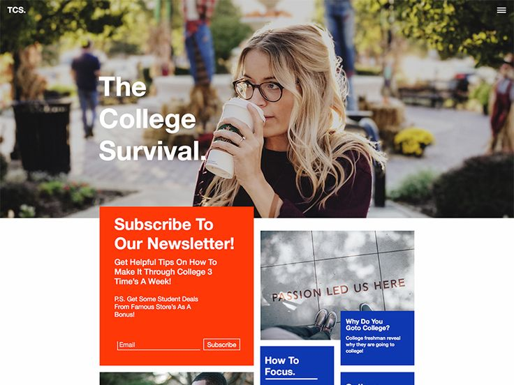 The College Survival Website by Stalone Sylvestre