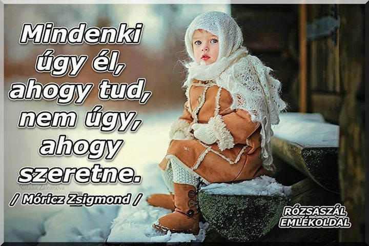 Móricz Zsigmond idézete az élet minőségéről. A kép forrása: Rózsaszál