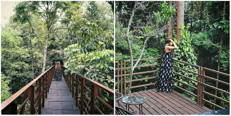 """Any time spent in nature is healing"" - Shikoba Thank you Aanchal Goel for sharing these images with us.  #ecoresort #ecoresorts #ecoluxe #nature #lovenature #luxury #luxuryresort #wander #wanderlust #theibniicoorg #theibnii_coorg"