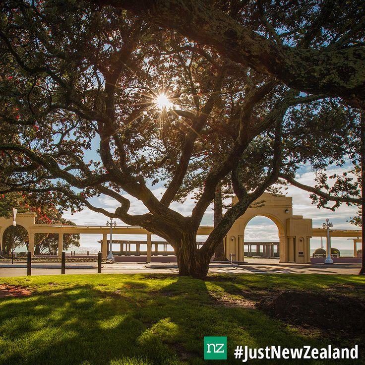 Enjoy the sunshine in Napier #Napier #HawkesBay #NZ #sunshine #walk #relax #scenic #holiday #JustNewZealand