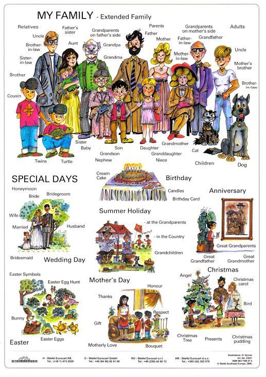 4th junior high english class: FAMILY     ILLUSTRATED VOCABULARY