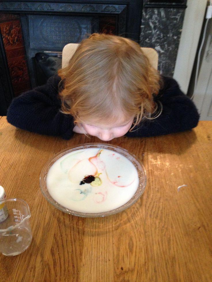 Indoor Firework Experiment - milk, washing up liquid, food colouring www.thewobblyjelly.wordpress.com