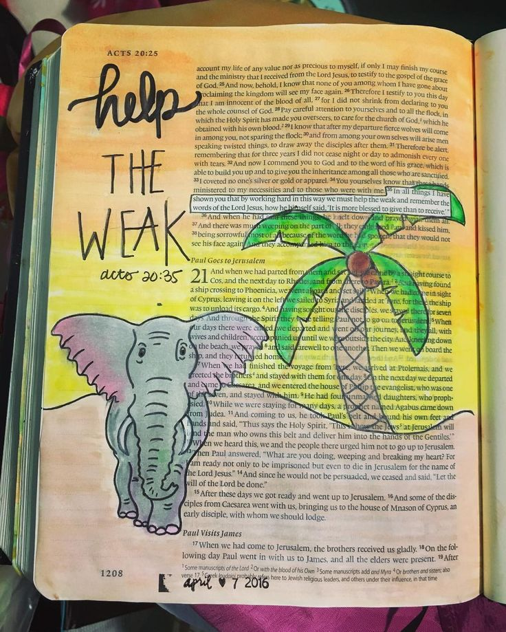 Did you know elephants demonstrate concern for members of their families, they take care of weak or injured members? Speaking for myself, I wish I was like an elephant ALL THE TIME. The bible says it's more blessed to give than receive. Just like elephants, they would rather help the weak in their families! ❤️⚓️ Acts 20:35  #biblejournaling