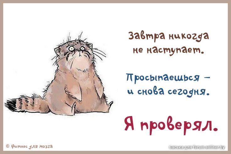 Душа оживает от чистоты: посмотри на лица детей, ты тоже был когда-то таким же. монах Симеон Афонский: 906 изображений найдено в Яндекс.Картинках