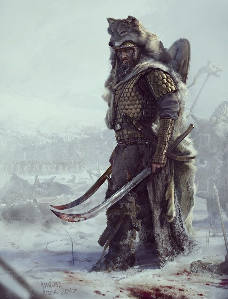 Warrior / Viking. Mani the wolf of the north dual wielding