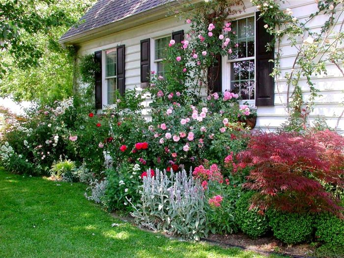 1000+ ideas about vorgarten pflanzen on pinterest | baum vorgarten, Garten und Bauen