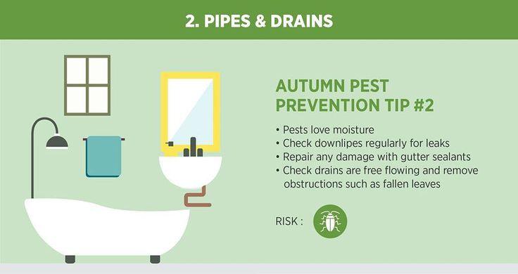 Be prepared for the colder seasons.  #pestcontrol #pest #pestreject #pestrepellent #rodents #diypestcontrol #diy #autumn #bathroom #homecleaning #housecleaning #sanitation #healthyenvironment #cleaningday #amazon #ebay #ebaydeals #ebayfinds #amazondeals #roach #mosquitos #ants #fleas #ticks #bugs #bugspray #roaches #lortek