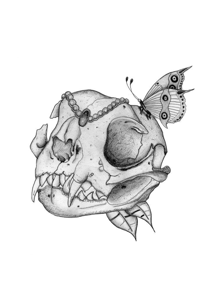'Cat Skull'