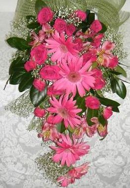 Cascading Gerber Daisy Bridal Bouquet    weddingflowersbycyndi.com