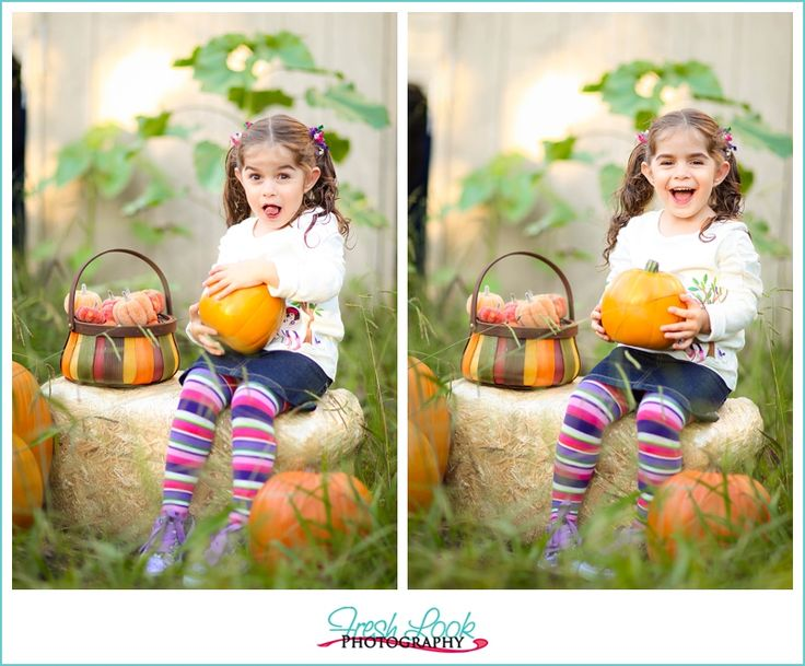 fall, Fresh Look Photography, Halloween, halloween mini sessions, hay bales, mini photo shoot, outdoor photo shoot, pumpkin patch