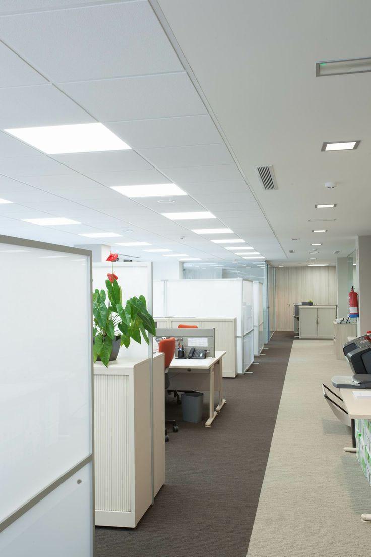 Proyecto de iluminacion led oficinas en bilbao con - Oficinas en bilbao ...