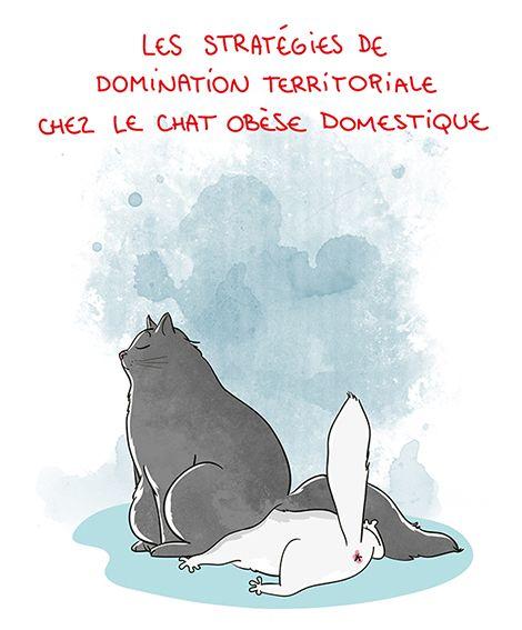 Petit précis de Grumeautique - Blog illustré by Nathalie Jomard