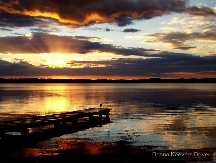Meditation 2 by Donna Keevers Driver