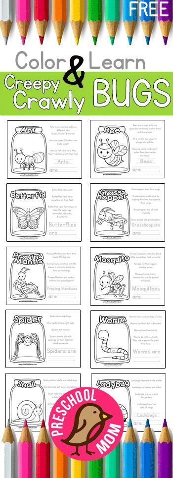 Free Bug Color and Learn Pages! Featuring ten different creepy crawlies, each with their own set of fun facts and fill in the blank writing activity. Great for a Spring Science unit in your Preschool Classroom. Free at http://PreschoolMom.com