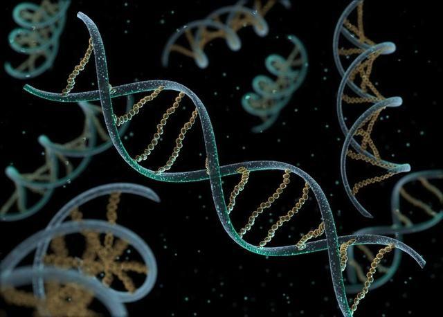 Hoy en día la teoría aceptada para explicar el origen de la vida es la que se basa en la hipótesis química expuesta por el ruso A. Oparin y el inglés Haldane en 1923.Cuando la Tierra se formó hace unos 4.500 millones de años, era una inmensa bola incandescente en la que los distintos elementos se colocaron según su densidad, de forma que los más densos se hundieron hacia el interior de la Tierra y formaron el núcleo, y los más ligeros salieron hacia el exterior formando una capa gaseosa.