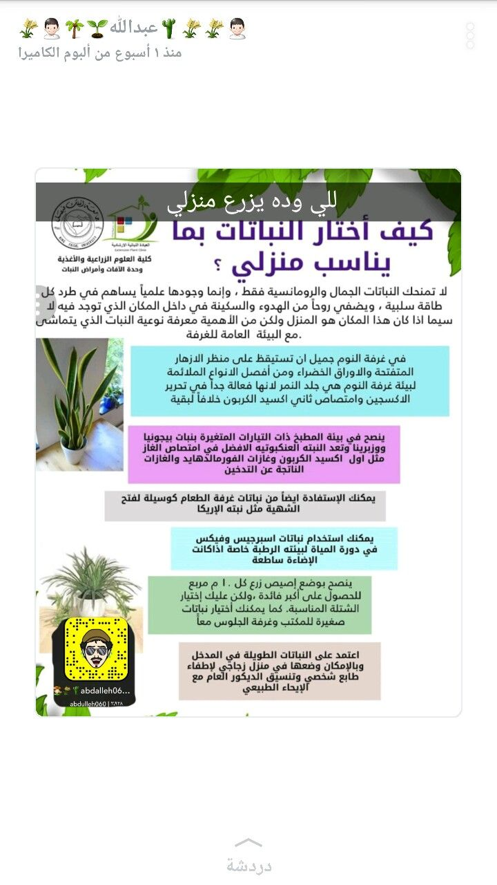 Pin By Asma On زرعه وانوعها Shopping