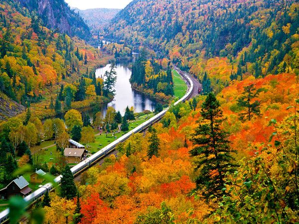 Train riders get an up-close look at the Agawa Canyon's fall colors.  Photograph by Bert Hoferichter, All Canada Photos