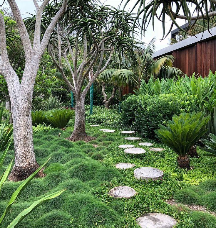 Pin By Colleen Hall On Garden In 2020 Front Yard Garden Design Garden Landscape Design Australian Garden Design