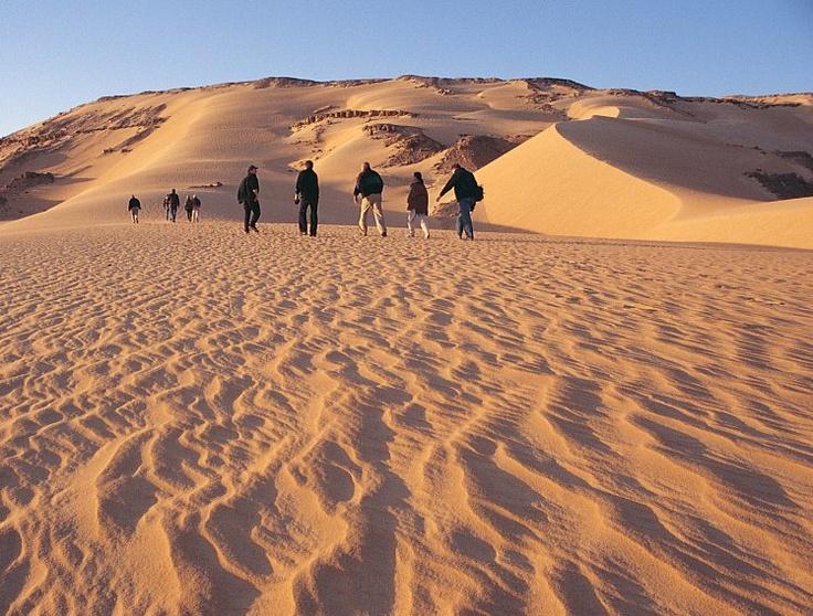 The Egyptian Desert Egypt travel, Desert tour, Tours
