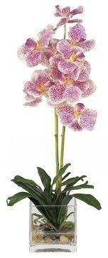 Vanda with Glass Vase Silk Flower Arrangement - contemporary - Artificial Flower Arrangements - ivgStores