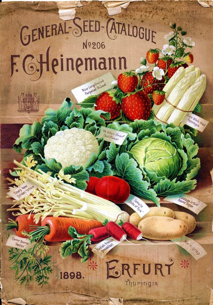 17 Best 1000 images about Vintage Seeds Catalogs on Pinterest