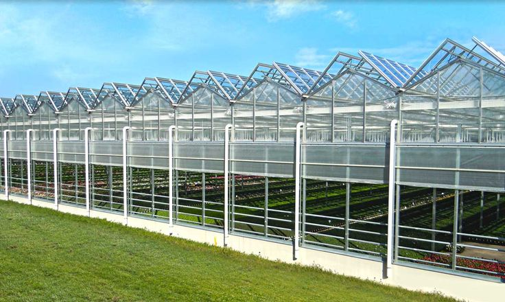 Commercial Greenhouse Manufacturer - Rough Brothers Inc