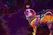 "New artwork for sale! - "" Pug Dog Animal Funny Cute Breed  by PixBreak Art "" - http://ift.tt/2uJ38rB"