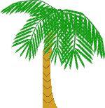 Over een familie die kerst onder de palmbomen viert